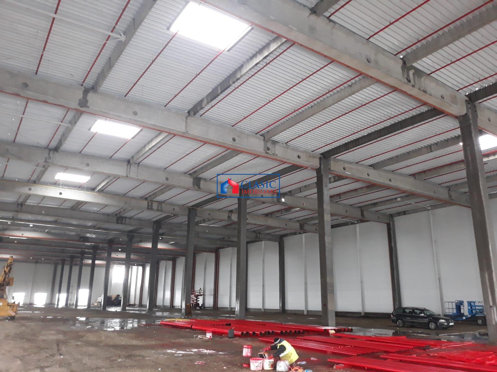 Hala industriala, pentru depozitare sau productie Jucu, Cluj Napoca