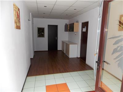 Vanzare casa individuala ideala pentru investitie! Centru, Cluj-Napoca
