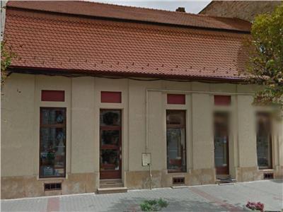 Inchiriere Spatii comerciale Centru, Cluj-Napoca