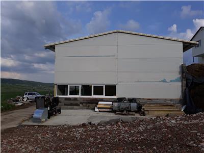 Inchiriere hala pentru depozitare sau atelier Iris   Valea Chintaului