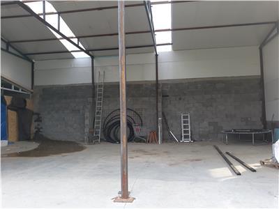 Inchiriere hala pentru depozitare sau atelier Iris - Valea Chintaului